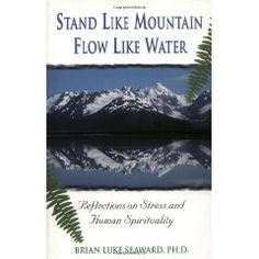 Books worth reading: Stand Like Mountain Flow Like Water