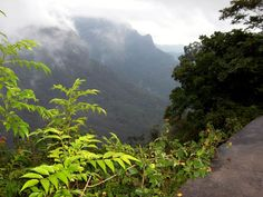 Misty Munnar  Cochin-02 Nights Munnar- Cochin @ just rs. 6300   to know more Visit us : http://travelchacha.com/packages/package125.htm