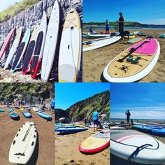 Sup Paddle Board, Sup Stand Up Paddle, South Devon, Water Transfer, New Adventures, In The Flesh, Paddle Boarding, Monkeys