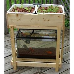 Modern aquaponics: backyard sustainable gardens using fish (Video)