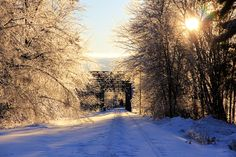 Trestle on Ice, Orono, Maine