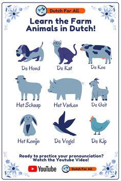 Learn Swedish, Learn Dutch, Learn German, Dutch Phrases, Dutch Words, The Farm, Dutch Language, Word Of The Day, Vocabulary Words