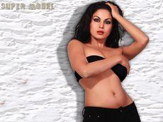 Veena Malik wallpaper