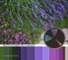 Lavender and Thyme are spilling over our garden paths releasing their heady fragrance as we brush against them! A lovely Split Complementary color combo for you to play with. For more color palettes read Artful Color for Creative Projects on Etsy: https://www.etsy.com/listing/167245949/artful-color-for-creative-projects-color?ref=shop_home_feat_4