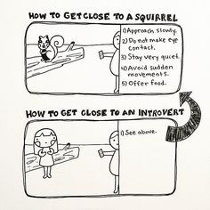 I can relate 100% to all of this. Approaching an introvert.
