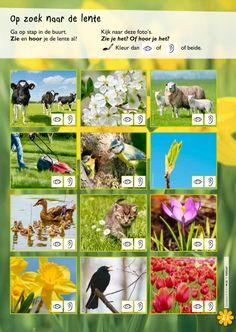 Werkblad: op zoek naar de lente.@keireeen Math Magic, Ga In, Reggio Emilia, Illustrations And Posters, Pre School, Homeschool, Spring, Projects, Kids