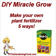 Home Made Miracle Grow - Make your Own - 5 different ways.  http://thegardeningcook.com/home-made-miracle-grow/