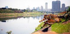 Eduardo Srur ocupa margens e pontes do Rio Pinheiros contra poluição da água. O jacaré entrando nas águas poluídas do Rio Pinheiros. Uma alusão aos animais que deveriam existir no local, já que rio deveria ser sinônimo de vida: http://abr.ai/14Ag8il