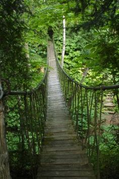 Les Quatre Vents--Click through to read more about this garden!