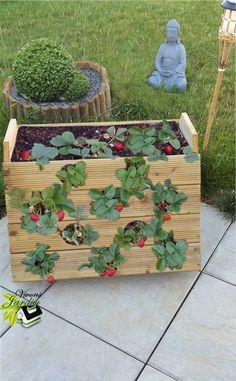 Plant Tower, Landscape Design, Garden Design, Strawberry Planters, Decoration Plante, Farm Gardens, Edible Garden, Raised Garden Beds, Garden Planters