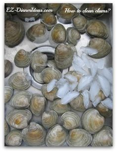 How to clean clams? A major step to have a plate of perfectly steamed clams. How To Cook Clams, How To Clean Clams, Clam Recipes, Seafood Recipes, Cooking Recipes, Asian Recipes, Seafood Meals, Cooking Kale, Cooking Salmon