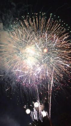 Disney World Fireworks, Fireworks Gif, Fireworks Pictures, New Year Fireworks, Happy New Year Gif, Happy New Year Pictures, Happy New Year Greetings, New Year Wishes, Happy Birthday Video