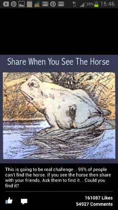 Free Funny and Witty Ecard: Optical Illusion - Can you see the horse? Image Illusion, Illusion Art, Funny Memes, Hilarious, When You See It, Can You Find It, Mind Tricks, Brain Teasers, Riddles