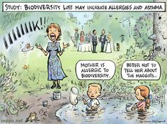 Biodiversity loss may increase allergies, keywords:  nature biodiversity natural environment child children dirt allergy asthma health rese...