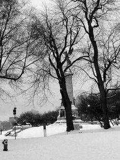 Mont Royal Park