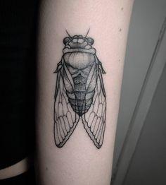 Tattoo Cigarra / Cicada tattoo Tattoo de Inseto / Insect Tattoo