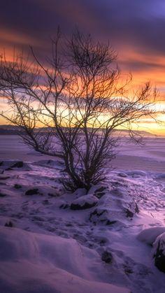 Buskerud Norway Lake Winter Snow #iPhone #6 #plus #wallpaper