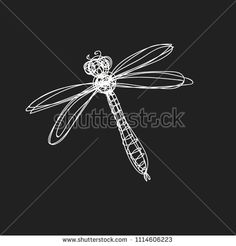 Hand drawn image of dragonfly in continuous line style. Vector illustration