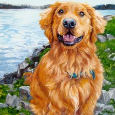 Sweet Babu Boo custom Pet Portrait Oil by puciPetPortraits on Etsy, $317.00