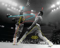 muhammad-ali-1_png_scaled500.png (450×367)