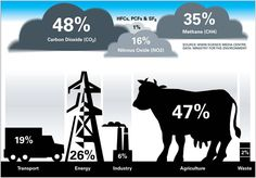 Cattle and Greenhouse Gases