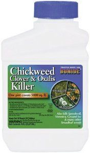 """Bonide Chickweed Clover & Oxalis Killer Pint by Bonide. Save 23 Off!. $7.63. Size: 1 Pint. """"Kills chickweed, clover, oxalis, plantain, speedwell, canadian thistle, ground ivy, dandelion and many others.One pint covers 5,000 square feet.Mix 3.2 ounces of concentrate to 1 gallon of water to treat 1000 square feet.Best applied through a tank-type sprayer or hose-end sprayer.Apply to actively growing weeds when air temperatures are below 80 degrees.Add bonide s spreader-sticker to the spra..."""
