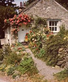 ツ adorable walkway and arbor with roses