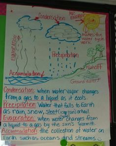 Water cycle anchor chart -science Good pics and definitions Fourth Grade Science, Middle School Science, Elementary Science, Science Classroom, Teaching Science, Science Education, Science Activities, Science Projects, Physical Science