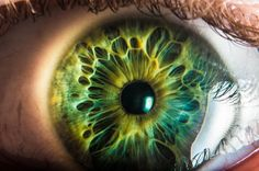 Eye Iris Pupil 目 œil глаз Occhio Ojo Color Texture Pattern Macro horror by Kirill Sintsov on Beautiful Eyes Color, Pretty Eyes, Cool Eyes, Foto Macro, Aesthetic Eyes, Human Eye, Eye Photography, Eye Art, Green Eyes