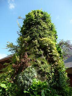Geranium Vivace, Loire, Garden Design, Planters, Landscape Architects, Yard, Statue, Pretty, Flowers