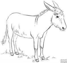 how to draw a running horse step by step