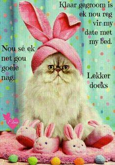 Lekker Dag, Good Night Sleep Tight, Evening Greetings, Goeie Nag, Afrikaans Quotes, Good Night Sweet Dreams, Good Night Quotes, Special Quotes, Positive Thoughts