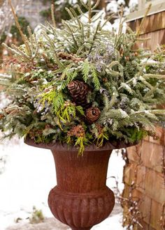Caspia (Limonium latifolium) and pinecones wired to wood picks accent spruce and cedar branches tucked into florist foam. More winter container garden ideas: http://www.midwestliving.com/garden/container/winter-container-gardens/?page=3,0