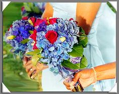 How to make a wedding hydrangea bouquet and a place to order hydrangeas -- with choice of color.  For Sarah.