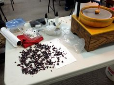 Garnet spread out for evaluation in the Faceting Academy event, May 2014.