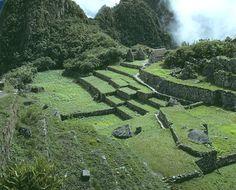 SL w7 - Machu Picchu Nat Geo - ss