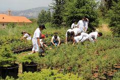 """""""غدي"""" تحتفل بيوم البيئة العالمي وتطلق اليوم البيئي المدرسي"""