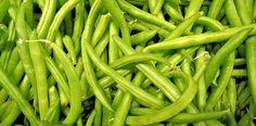 There are many varieties of beans so in this article I will discuss about can dogs eat beans? Are beans good for dogs? You can give them cooked beans. Name Of Vegetables, Healthy Vegetables, Veggies, Organic Vegetables, Growing Green Beans, Frozen Green Beans, Vegetable Garden For Beginners, Gardening For Beginners, Vegetable Gardening