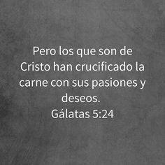 Pero los que son de Cristo han crucificado la carne con sus pasiones y deseos.  Gálatas 5:24