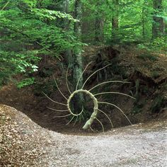 Norie Hatakeyama About Art & Culture Coil, John Bisbee Jhn Bisbee Francois Lelong Arte Sella Andy Goldsworthy Material Wor. Land Art, Environmental Sculpture, Ephemeral Art, Deco Nature, In Natura, Organic Art, Forest Art, Outdoor Art, Art Plastique