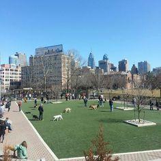Schuylkill River Dog Park in Philadelphia