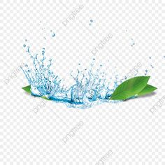 Best Camera For Photography, Water Water, Background Images, Vectors, Designers, Clip Art, Free, Gripe Water, Picture Backdrops