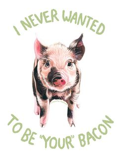 Camilla Narea Illustration • Pigs never have a choice.  You do.  (Artwork:...