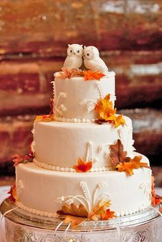 "Such a cute idea for a fall wedding cake. Using owls as a cake topper. I would design a wedding theme, ""Owl Always Love You"""
