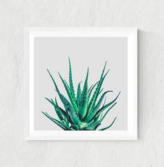 Aloe vera print aloe vera leaves art print aloe par LionartPrints
