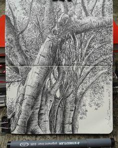 #sketch #moleskine #tree Lidia Barragán