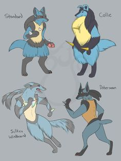 cheeziesart:Lucario - Domestic DogsCollies used to be primarily herding pokemon on farms but modern Collie Lucario have been bred and modified for the show ring. The fluffier they are and the longer their golden spikes are, the better.Silken Windhounds were bred to track and chase down other pokemon. These days, people use them to compete in the pokeathlon and agility competitions. These Lucario need lots of exercise and their spikes are made of light-weight titanium.Dobermans were bred for…