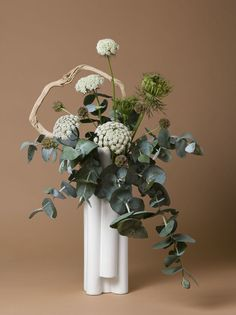 """Bouquets Highlight Plants Used to Control Women's Reproductive Health. Ann Shelton, """"The Handmaid, Queen Anne's Lace (Daucus sp.),"""" from jane says Artistic Photography, Life Photography, Still Life Photographers, Queen Annes Lace, Ikebana, Flower Decorations, Contemporary Artists, Art Gallery, Bloom"""