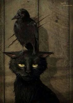 """the raven and the cat (small raven that is. or perhaps the artist is one of those who thinks """"raven"""" and """"crow"""" are synonymous. Crazy Cat Lady, Crazy Cats, Pinterest Arte, The Raven, Raven Art, Crow Art, Illustration Art, Illustrations, Arte Obscura"""