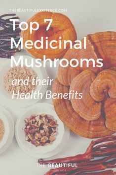 Top 7 Medicinal Mushrooms and their Health Benefits Medicinal mushrooms are sprouting up everywhere in supplements and superfood ingredients in chocolate and even coffee, but why all of the sudden interest in these adaptogenic mushrooms? Edible Wild Mushrooms, Growing Mushrooms, Stuffed Mushrooms, Health Benefits Of Mushrooms, Mushroom Benefits, Mushroom Varieties, Mushroom Tea, Medicinal Herbs, Healing Herbs